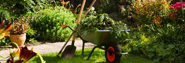 travaux de jardinage au Printemps
